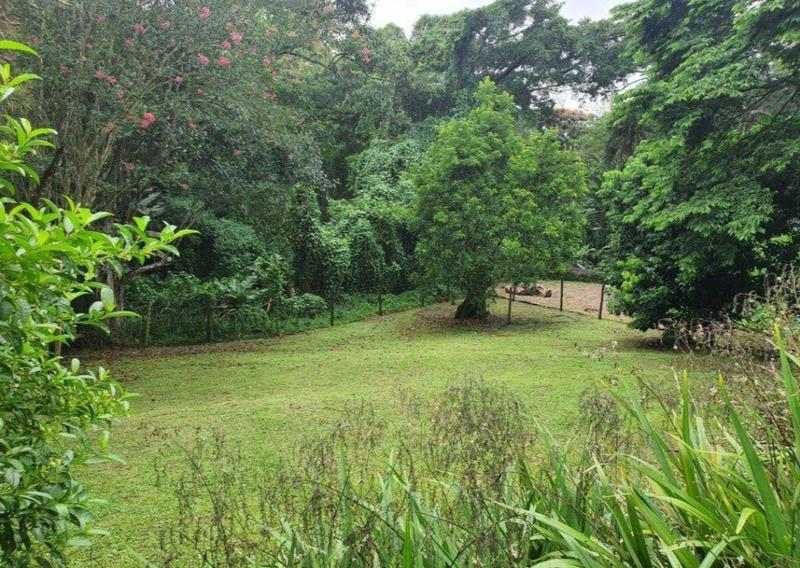 Property For Sale in Padfield Park, Pinetown 8
